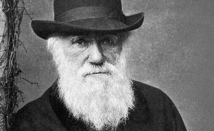 Darwin at 200