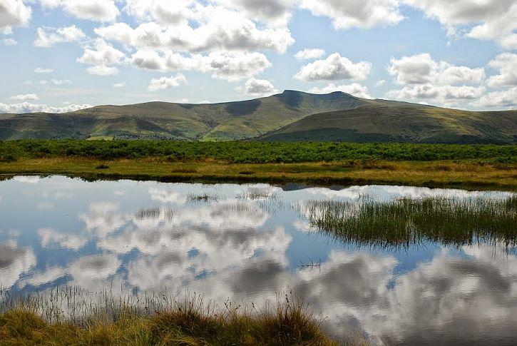 across the common at Mynydd Illtud