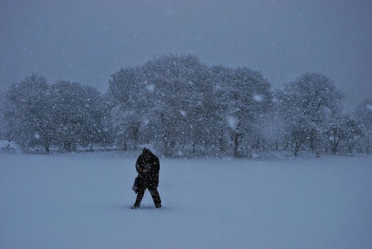 Snowstorm Sefton Park