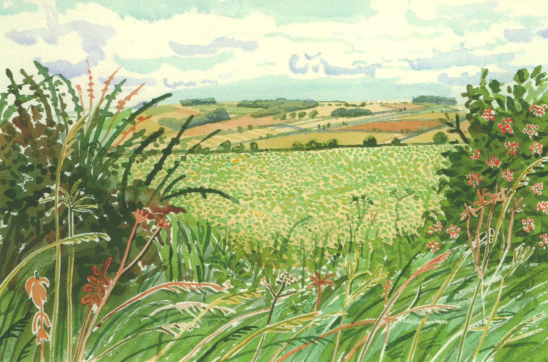 Garden Landscaping East Yorkshire : David hockney s new exhibition at salt mill that how the light gets in