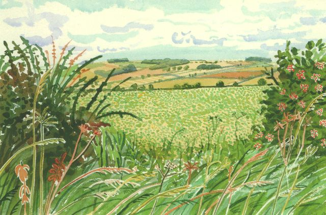 David Hockney Yorkshire midsummer: A gap in the hedgerow