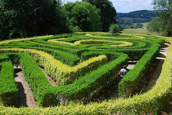 Painswick Rococo Gardens The Maze 2