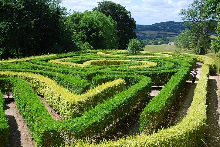 Painswick Rococo Gardens The Maze