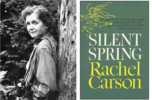 rachel carsons environmental concern essay And it was science—much of it led or conducted by epa researchers—that taught us how to turn environmental concerns rachel carson, rachel will essay.