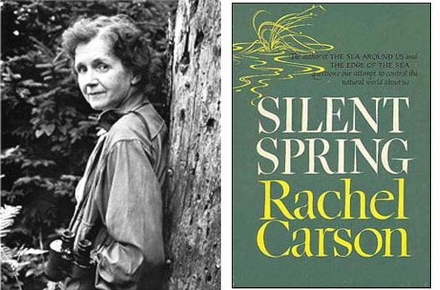 Silent spring essay