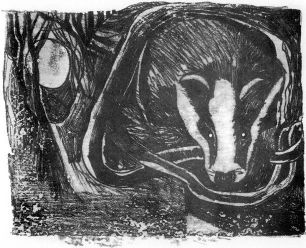 Badger - RJ Lloyd