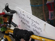 Occupy 29