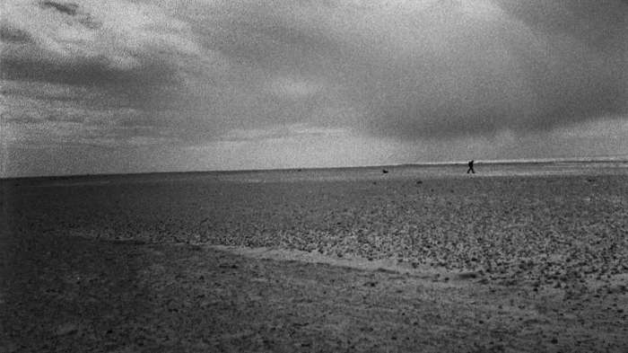 Patience (After Sebald): the synchronicity of words andimages