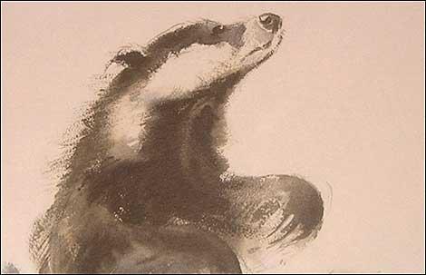 Badger by Eileen Soper