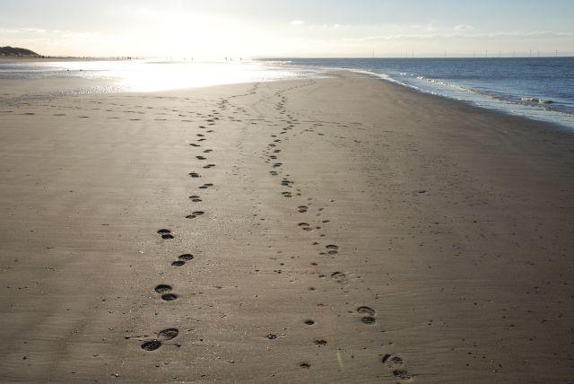 Path Formby beach