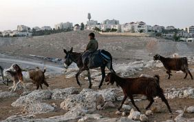 Palestinian Bedouin boy rides a donkey near the Jewish settlement of Maale Adumim