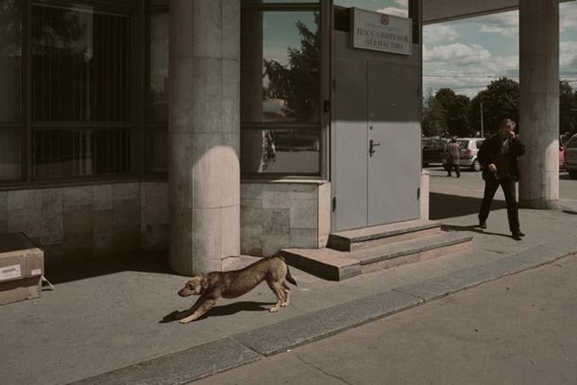Boris Savelev, Dog Moscow, 2007