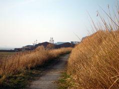 Coastal Reserve 20