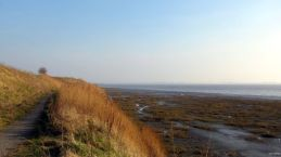 Coastal Reserve 4