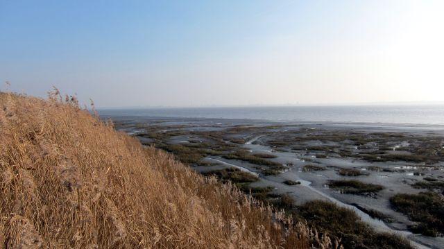 Coastal Reserve 7