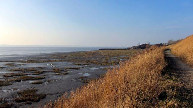 Coastal Reserve 8