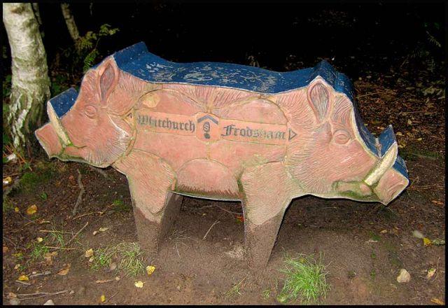 Wild Boar sign