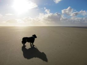 Fudge at Formby