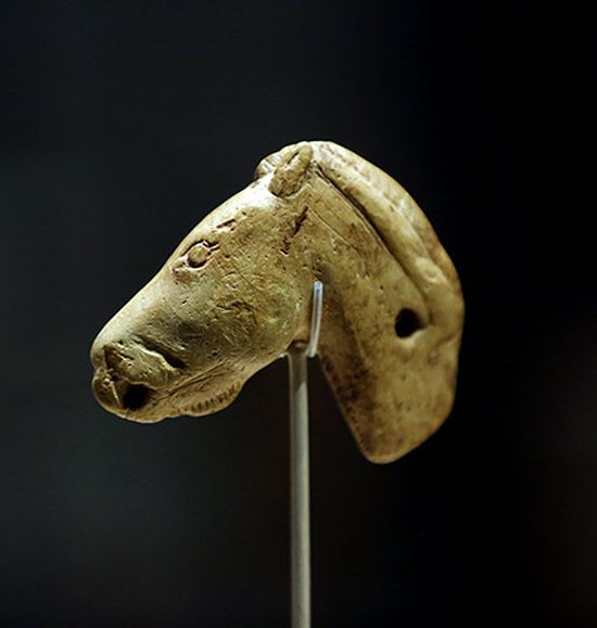 Horse head, Duruthy Cave, Pyrenees