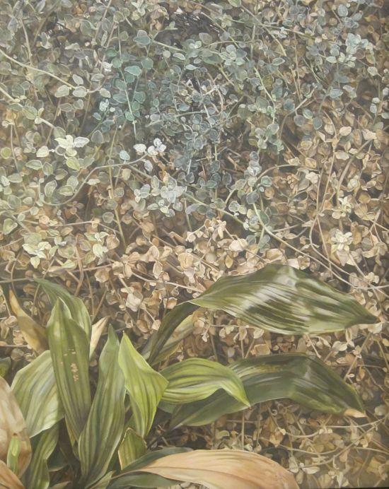Lucian Freud Two Plants 1977-80