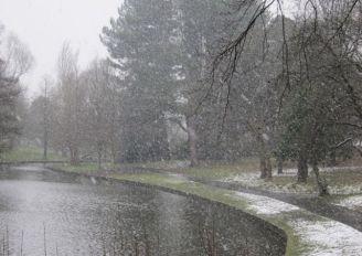 Spring snow 2