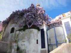 Capri 3b