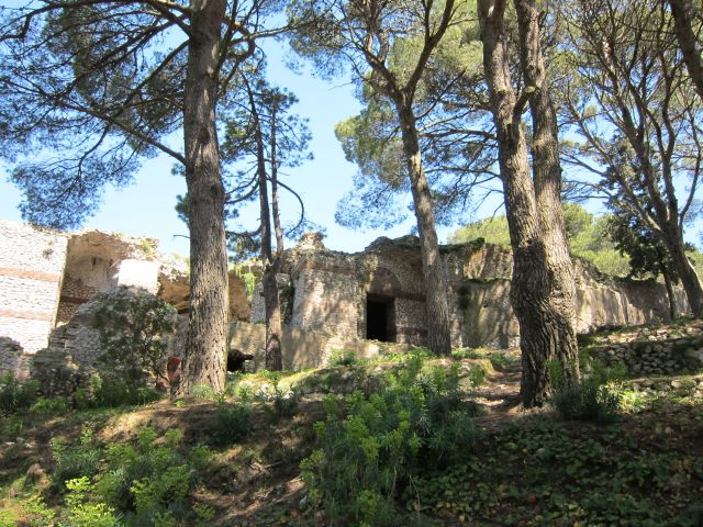 Capri 44