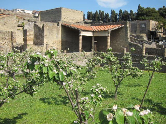 Herculaneum house of the Inn