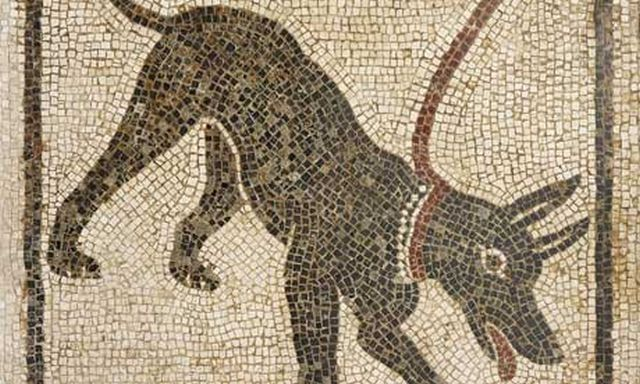 Mosaic of a guard dog from the House of Orpheus, Pompeii