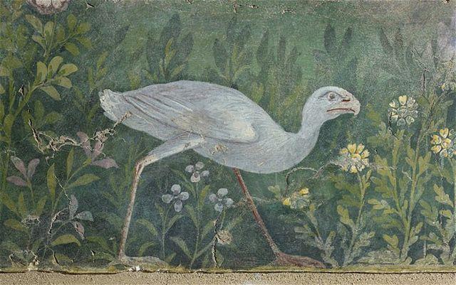 Pompeii exhibition purple swmp hen from garden fresco found in the House of the Golden Bracelet in Pompeii