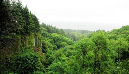 Eas Mor gorge