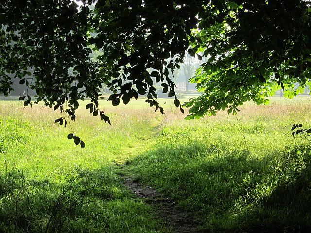 Sefton Park 2