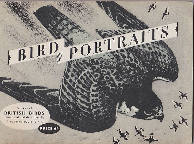 Tunnicliffe, Bird Portraits album, 1957