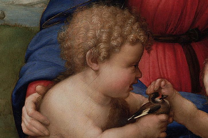 Raphael, Madonna del Cardellino Madonna of the Goldfinch detail