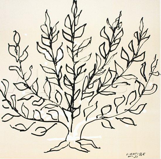 Tree, 1951