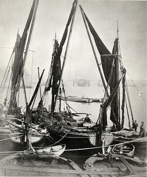 James Hedderley Thames barges