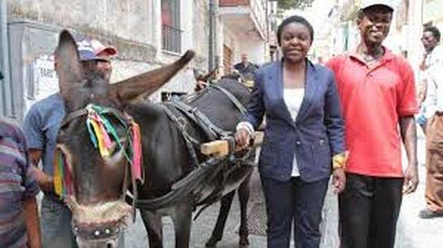 Riace donkey