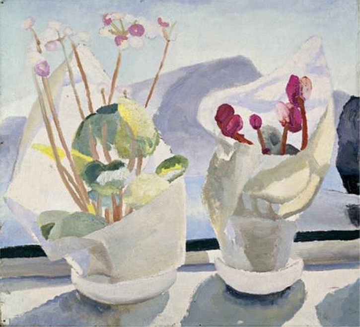 Cyclamen and Primula, 1922-23