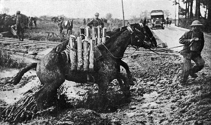 Pack horses carrying ammunition in Flanders, from 'The Horse and the War' by Captain Lionel Edwards, published by Country Life in 1918.