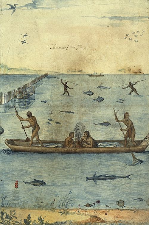 John White, The Manner of Their Fishing
