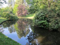 Upper Brook 1