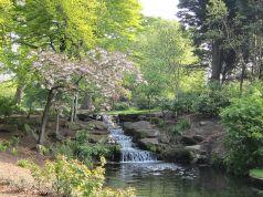 Upper Brook 11