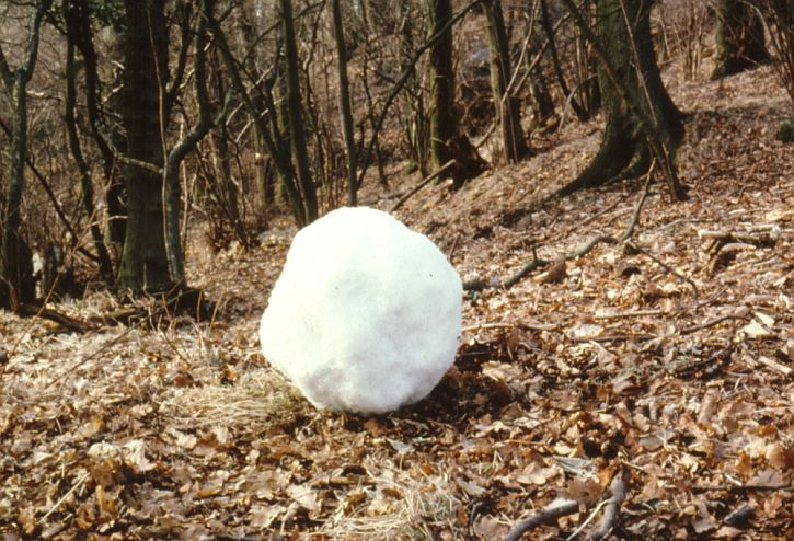 Andy Goldsworthy, Snowball made from last remaining patch of snow 1979