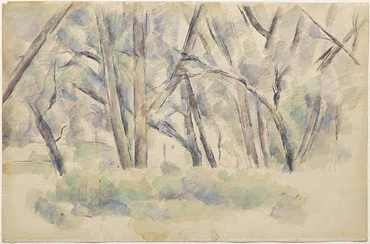 Cezanne, Forest Interior c1890