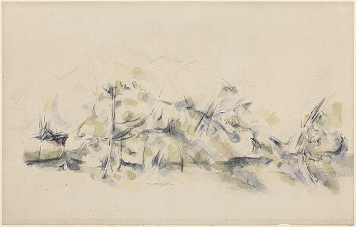 Cezanne, Undergrowth, ca. 1900–04