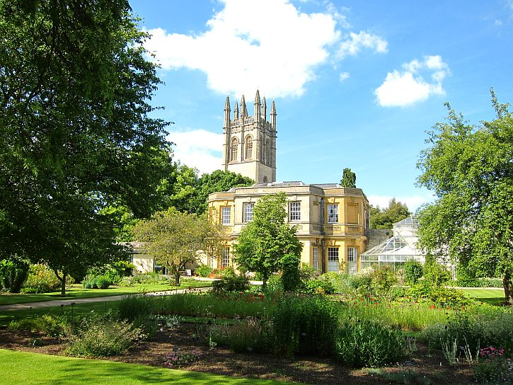 Oxford Botanical 2