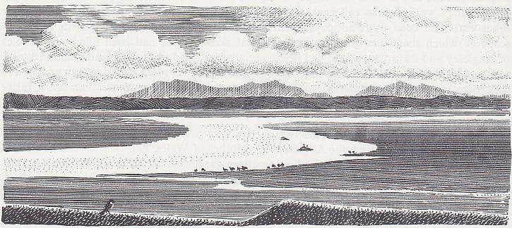 Shorelands 1