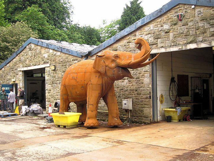 YSP elephant