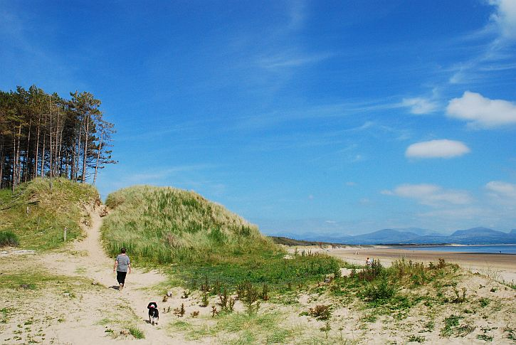 Llanddwyn Island 14a