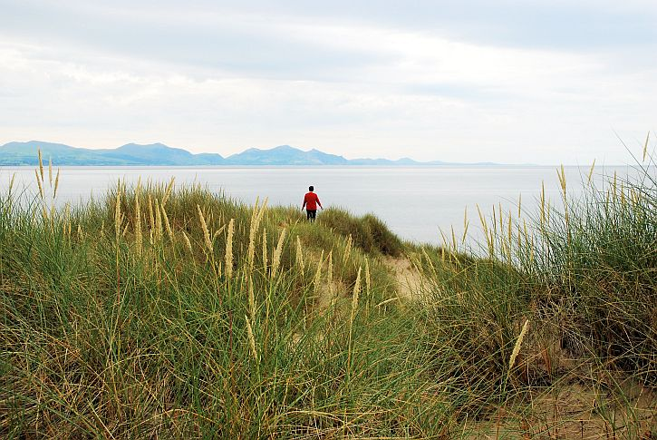 Newborough Warren 16